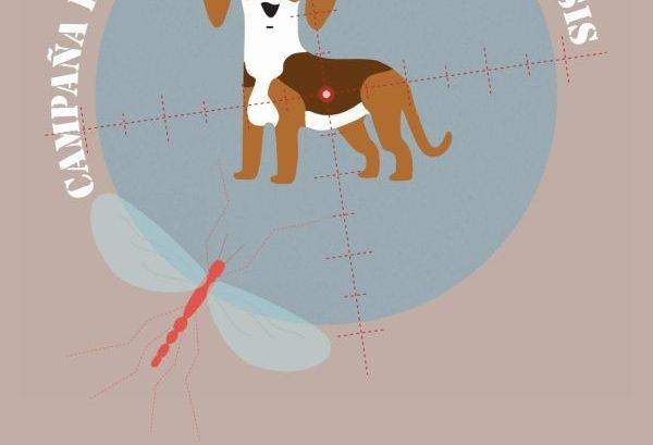 Campaña vacunación leishmaniosis