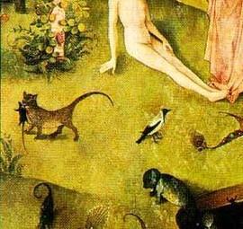 gato_el_jardin_de_las_delicias_bosco
