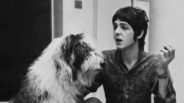 10 canciones inspiradas por mascotas