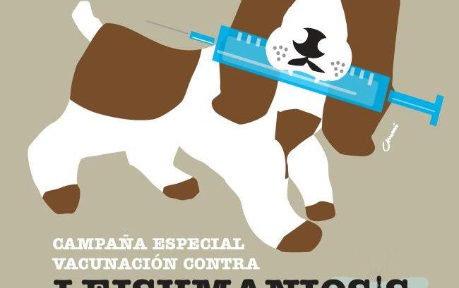 cartel_campaña_leishmaniosis febrero 2016
