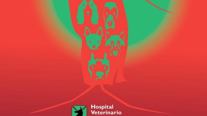 campaña prevención de leishmaniosis