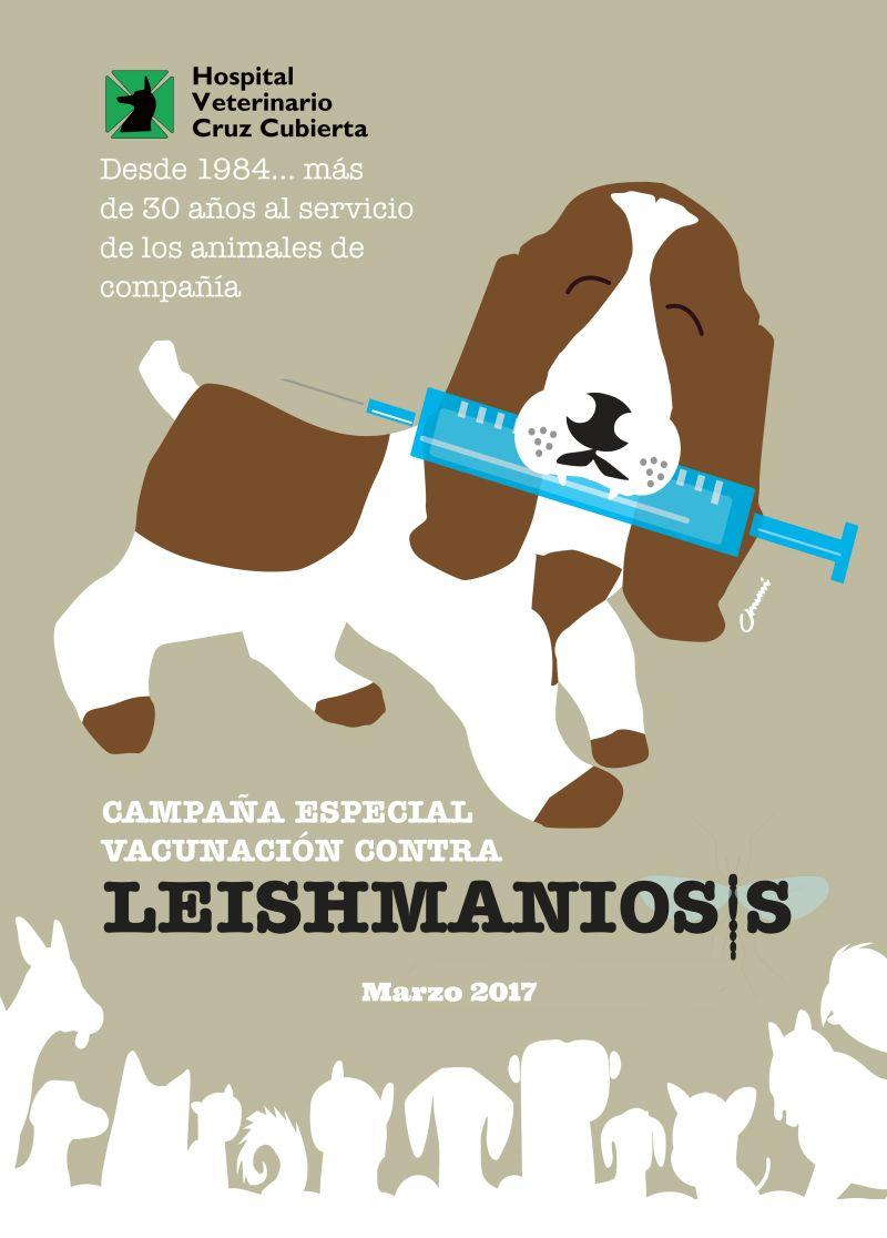 campaña Leishmaniosis