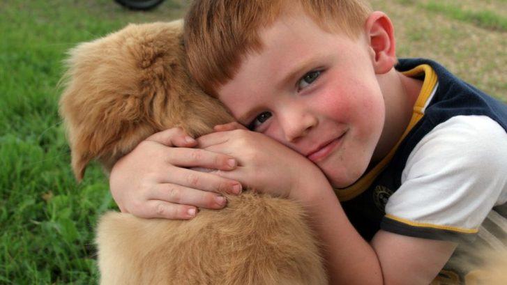 terapia asistida con animales para niños