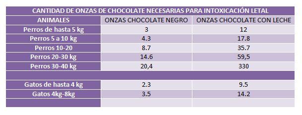 cuadro intoxicación chocolate