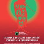 campaña de prevención leishmaniosis