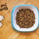 controlar el peso de tu perro