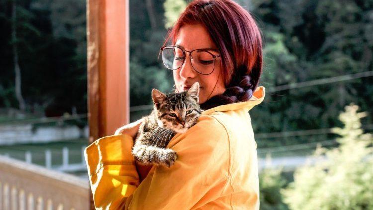gatoterapia destacado