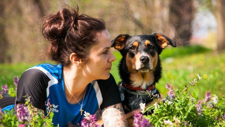 como influyen tus emociones sobre tu mascota